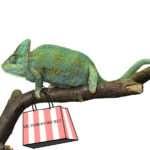 A Lizard Walks into a Mall…..